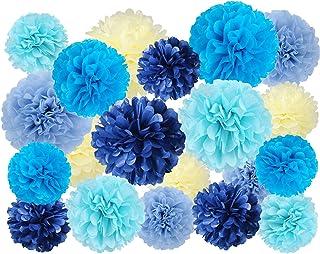 20 Pcs Tissue Pom Poms Kit, Tissue Paper Flowers for Birthday, Boy Baby Shower, Nursery, Graduation, Bachelorette Party De...