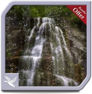 Rainy Waterfall Forest HD - Peacefull Meditation with your Fire TV