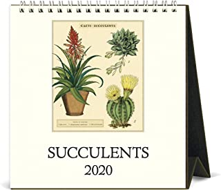 2020 Succulents Desk Calendar