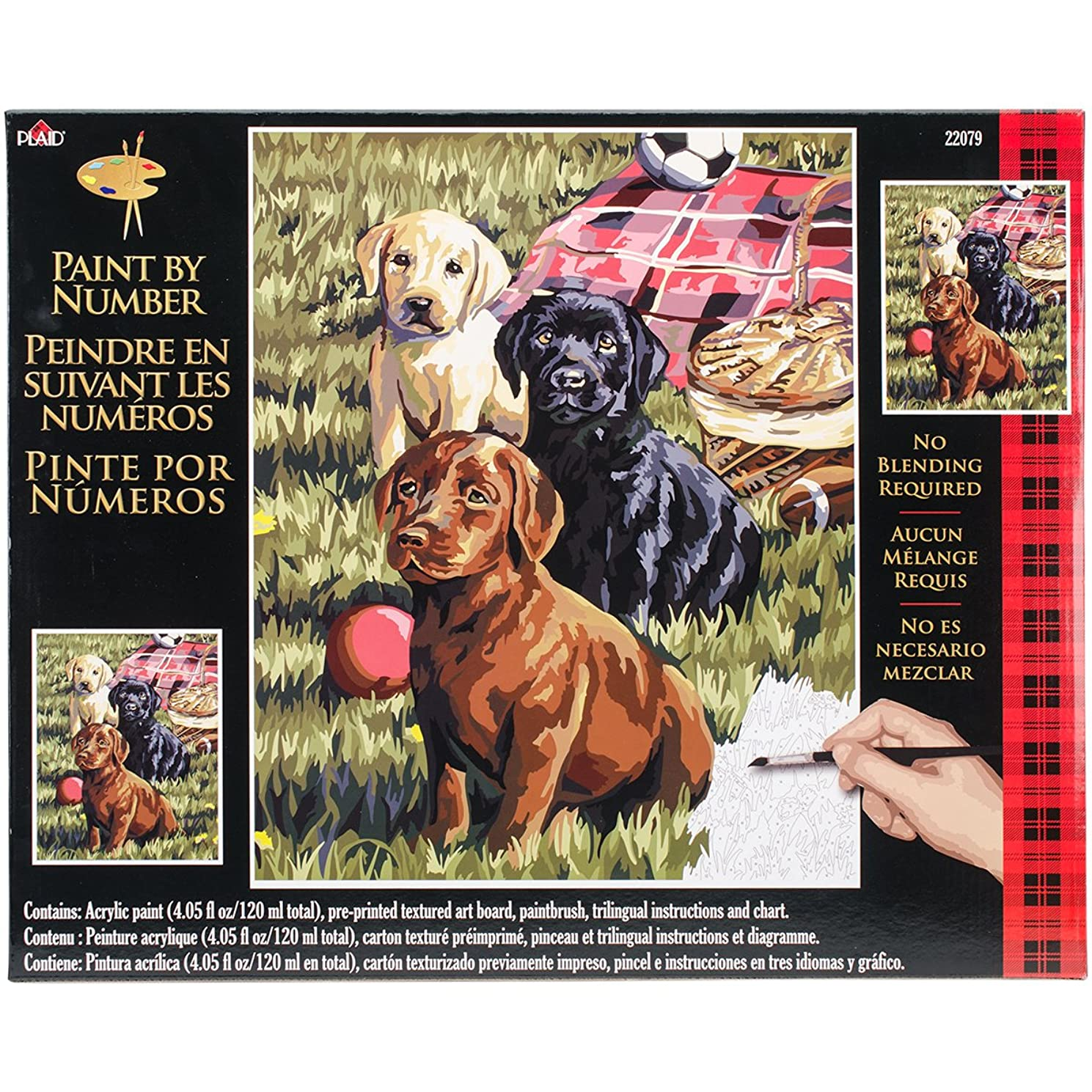 Plaid Creates Paint by Number Kit (16 by 20-Inch), 22079 Puppy Picnic