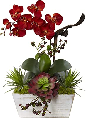 Nearly Natural Seasonal Orchid and Succulent Garden with Planter, Burgundy