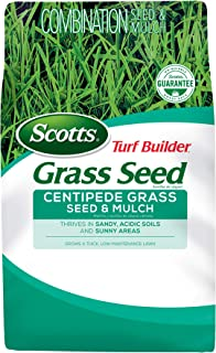 scotts st augustine grass seed