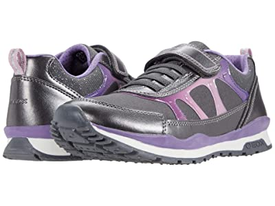 Geox Kids Pavel 8 (Big Kid) (Dark Grey/Dark Violet) Girl