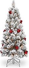 National Tree Bristle 4.5' Snowy Pine Tree