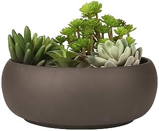 Explore Succulent Centerpieces For Tables