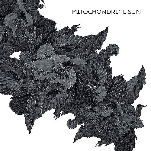 Mitochondrial Sun