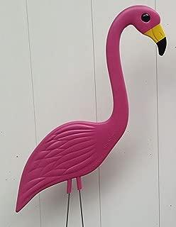 36 Pink Flamingos,