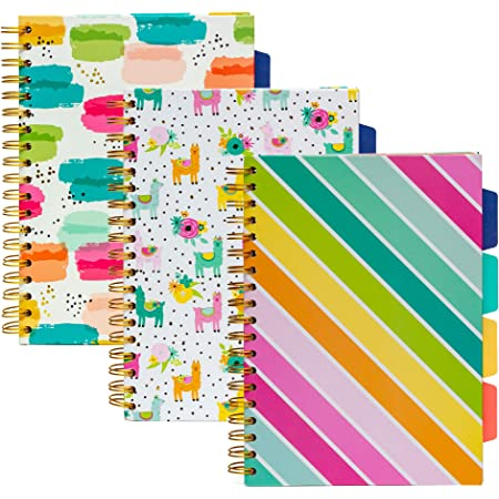 Miquelrius 48295 Spiralbuch 120 Blatt Horizontal innen Jordi Labanda Koala Hardcover A4 4 Farben