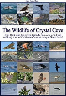 The Wildlife of Crystal Cove Movie