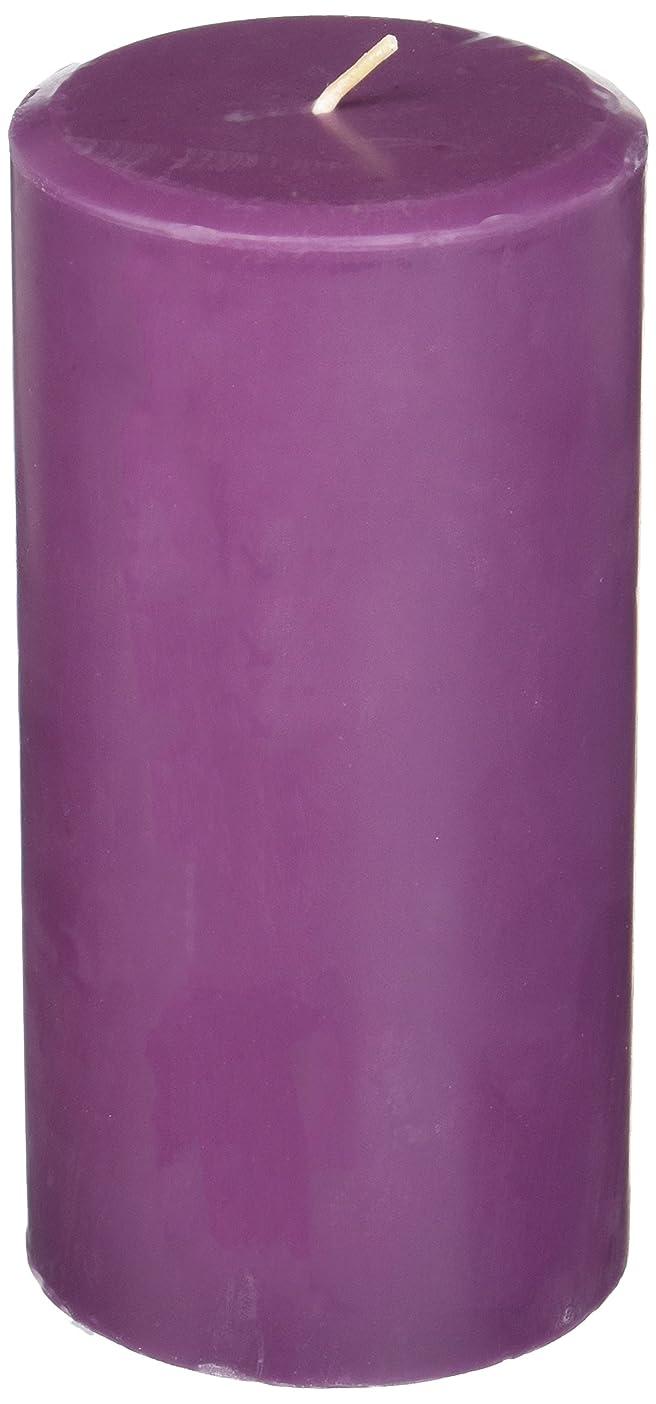 地質学語作曲家Northern Lights Candles Plum Orchid &ダリアFragranceパレットPillar Candle、3?x 6?