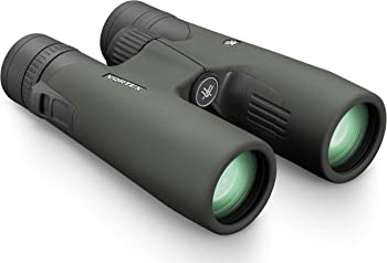 Vortex Optics RZB-3101 8x42 Roof/Dach Prism Binocular (Green)
