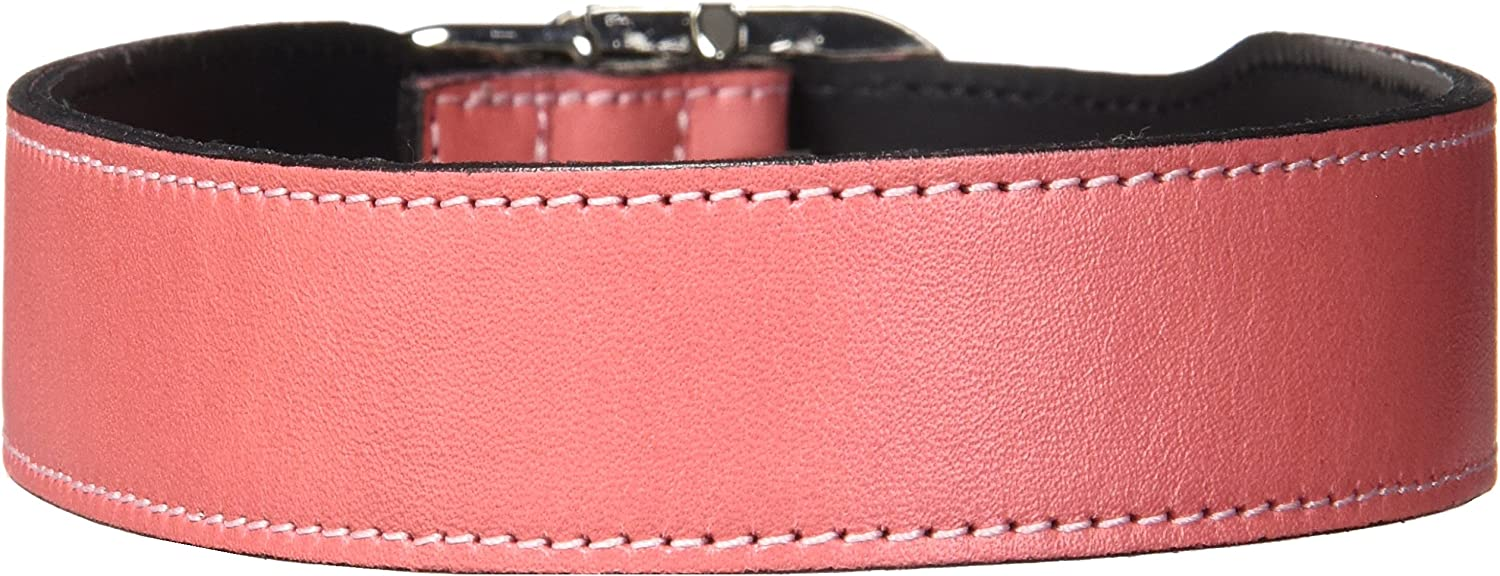 Hartman & pink 1395 Plain Nickel Plated Dog Collar, 20 to 22Inch, Petal Pink
