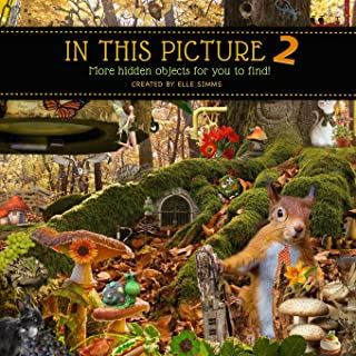 In This Picture 2 - More Hidden Objects for You to Find! (Volume 2)