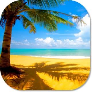 hot beach wallpapers hd