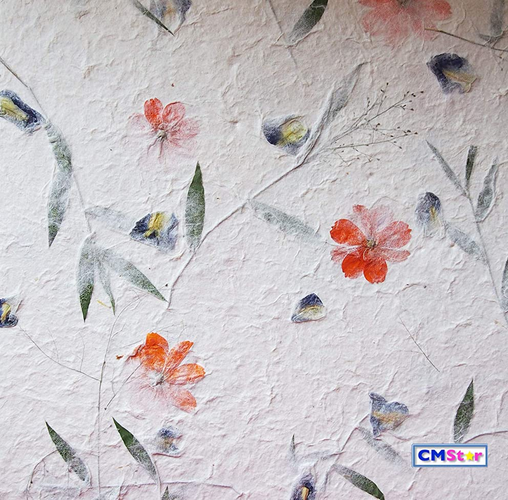 CMStar 12 Sheets 16x26.5 cm. Handmade Natural Dried Mulberry Paper Embeded with Natural Leaves and Flowers Set B