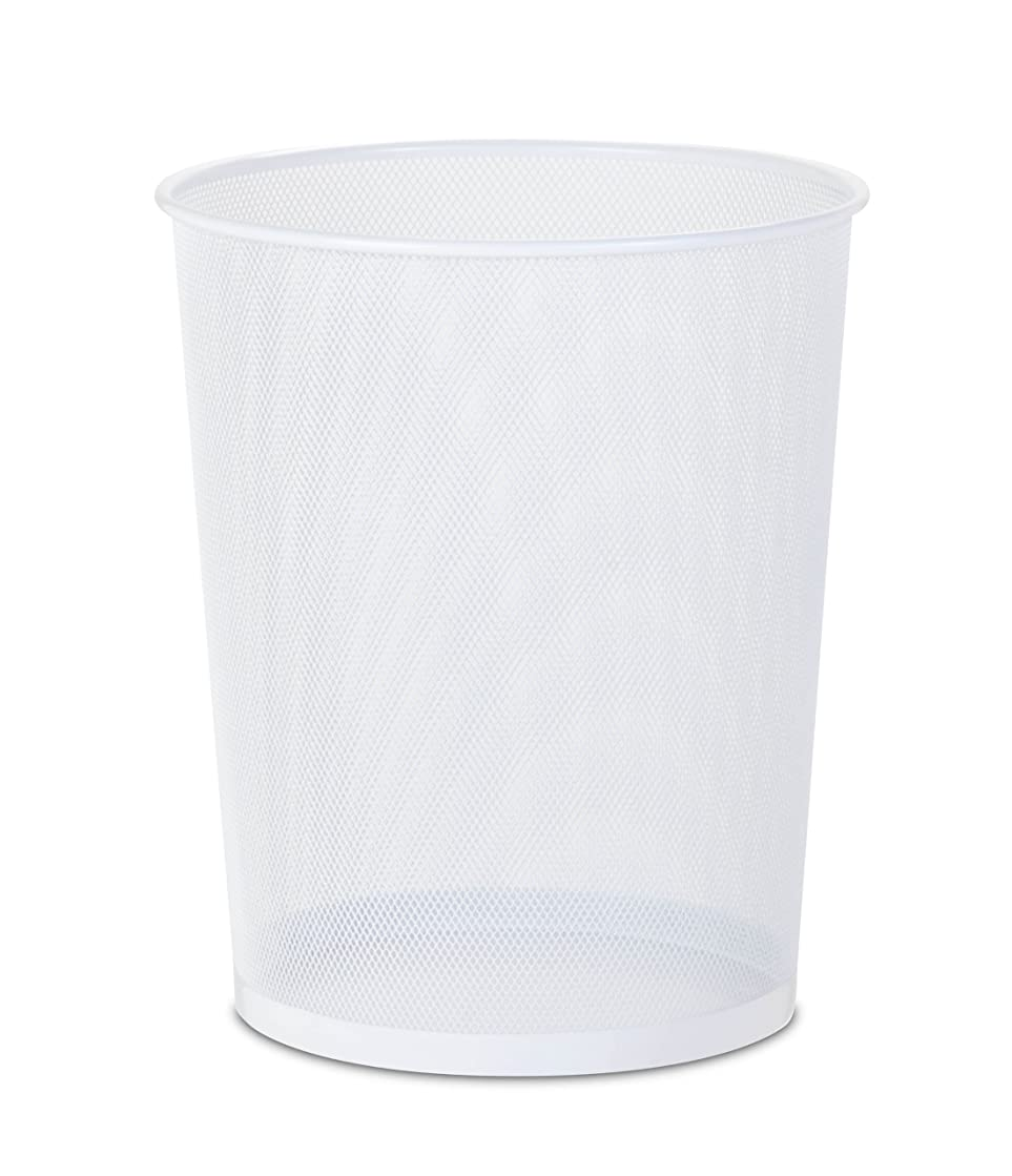 Honey-Can-Do TRS-02120 Steel Mesh Powder-Coated Waste Basket, White, 18-Liter/4.7-Gallon Capacity, 11.75 x 14-Inches Tall