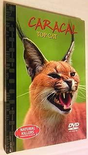 Natural Killers: Caracal Top Cat Book & Dvd Set! Predators Close-up