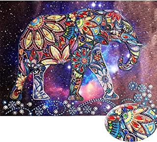 HuaCan Diamond Painting Kits for Adults DIY 5D Special Shape Partial Drill Crystal Rhinestone Embroidery Pictures Arts Craft for Home Wall Decor Elephant 30x40cm