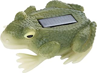 Trenton Gifts Solar Frog