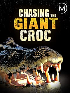 Chasing the Giant Croc