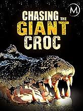 Best crocodile long island Reviews
