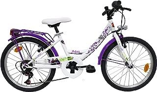 Bicicleta descendientes 20pulgadas