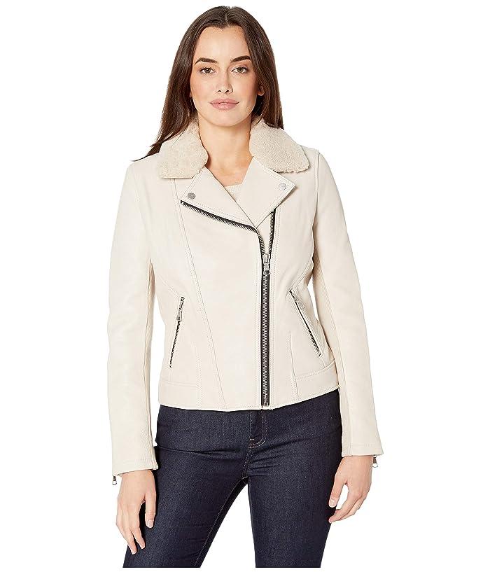 UGG  Andee Leather Cycle Jacket (Stone) Womens Coat