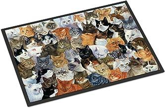 "Caroline's Treasures A Family of Foxes at Home Indoor or Outdoor Mat 18x27 BDBA0283MAT 18"" H x 27"" W Multicolor, Multicolor, 24 x 36"