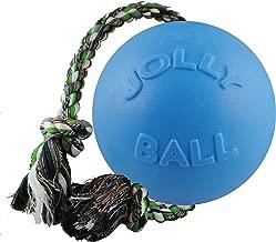 Jolly Pets 8-Inch Romp-n-Roll, Blueberry
