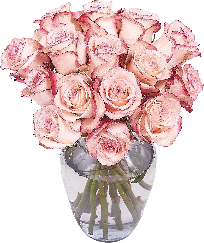 Premium Long-Stem Fresh Cut Roses. Gift For sale Sacramento Mall Special A Birthdays