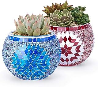 Micgeek Plant Pots 2 Pack Succulent Plant Pots Mini Glass Flower Vase for Indoor Decor Small Planter Indoor Plant Pots Mos...