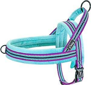 No Escape Dog Harness