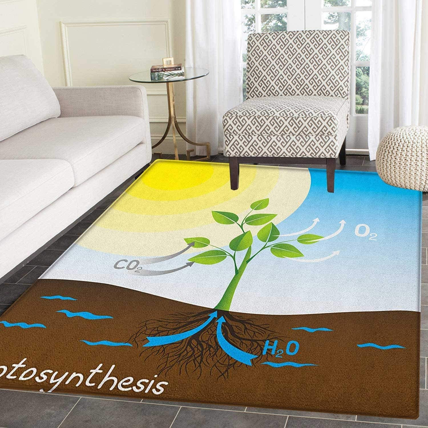 Educational Anti-Skid Area Rug Simple Photosynthesis Scheme Plant Sun Molecules Chemical Chain Growth Ecology Door Mat Increase 4'x5' Multicolor