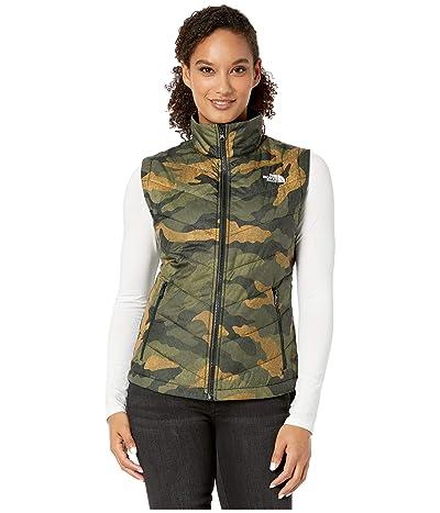 The North Face Tamburello 2 Vest (Burnt Olive Green Waxed Camo Print) Women