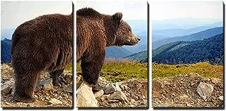 Best bear mountain inn pictures Reviews
