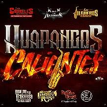 Best la burra orejona huapango Reviews