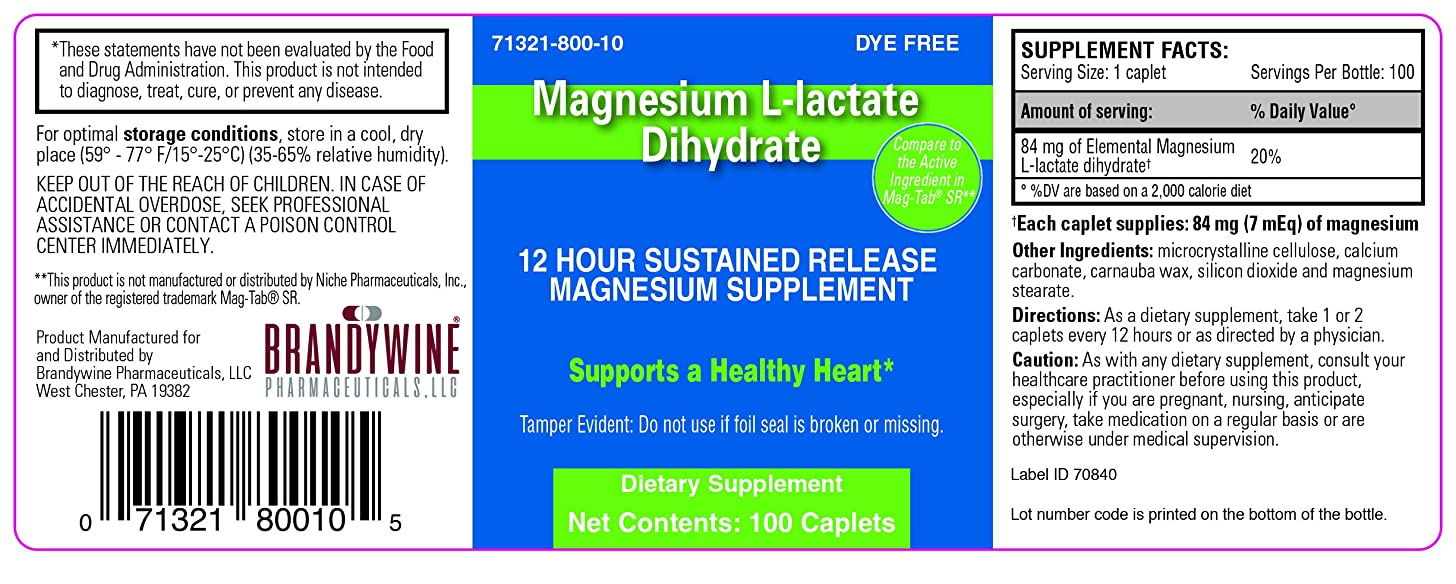 Magnesium L-lactate Dihydrate 100 ct (compares to active ingredient in Mag-Tab SR) (100)