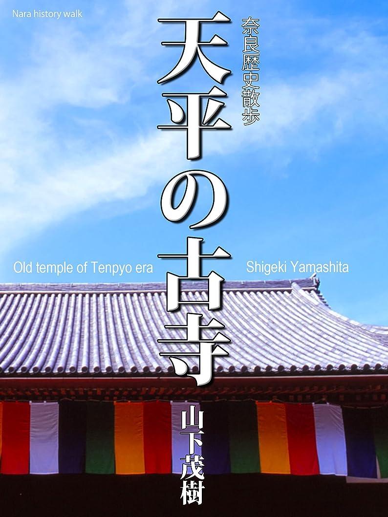 倒産うねるストリップ天平の古寺: 奈良歴史散歩 SlowPicture