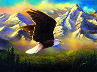 Flying High 1000 pc Jigsaw Puzzle by SunsOut