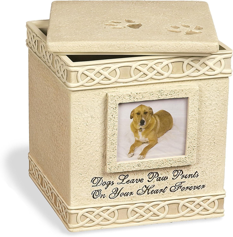 Angel Star Dog Paw Prints Keepsake Box with Small Photo Frame, Metal, MultiColour, 19 x 19 x 20 cm