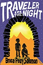 Traveler in the Night (Realm of Possibility Book 1)