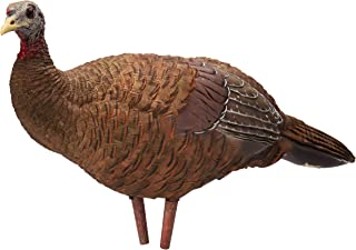Avian-X Breeder Hen Turkey Decoy,  Lifelike Collapsible Decoy With Carbon Stake and Carry Bag
