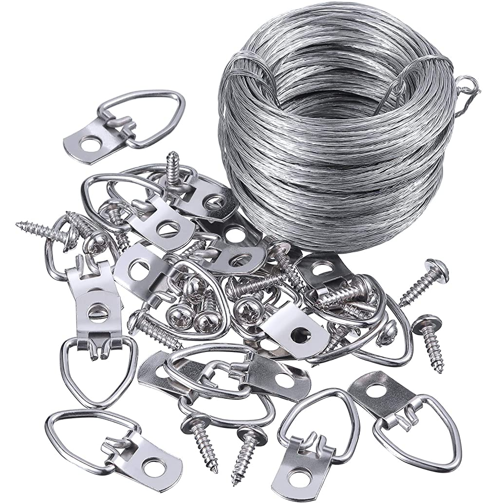 Jovitec Picture Hanging Kit 20 Pieces D-Ring Picture Hangers with Screws, Picture Hanging Wire, Supports up to 30 lbs (100 Feet)