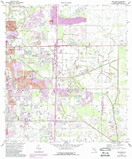 YellowMaps Bee Ridge FL topo map, 1:24000 Scale, 7.5 X 7.5 Minute, Historical, 1973, Updated 1988, 26.9 x 23 in