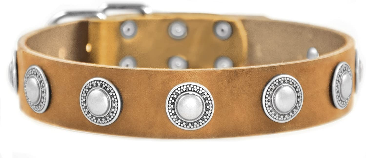 Dean and Tyler SIMPLE TREASURE , Leather Dog Collar with Solid Nickel Hardware  Tan  Size 18Inch by 11 2Inch  Fits Neck 16Inch to 20Inch