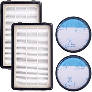 KEEPOW Kit de 2 Filtros HEPA y Espuma para Rowenta Compact