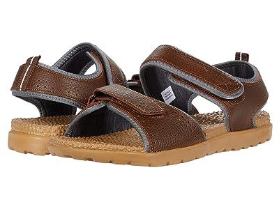 Acorn Everyweartm Grafton Sandal (Walnut Brown) Men