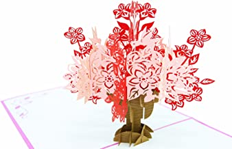 PopLife Flower Bouquet 3D Pop Up Mother's Day Card - Anniversary Pop Up Valentines Card, Happy Birthday, Sympathy Card - Gift for Her - for Mom, for Daughter, for Wife, for Grandmother, for Teacher