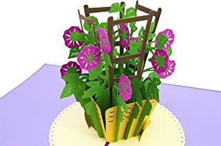 PopLife Morning Glory Flower 3D Pop Up Mother's Day Card - Anniversary Pop Up Valentines Card, Happy Birthday, Sympathy Card - Gift for Her - for Mom, for Daughter, for Wife, for Grandmother, Teacher