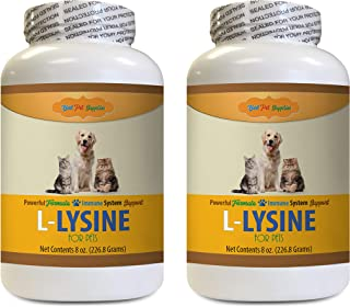Dog Immune Supplement - Premium L-LYSINE for Pets - Dogs and Cats Powerful Immune System Support - Vet Recommended - pet l- lysine Dog - 2 Bottles (16 OZ)